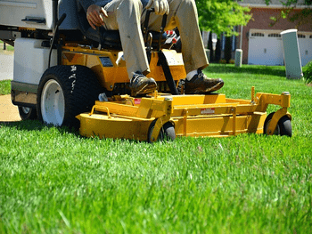 Lawn Maintenance to love your lawn again